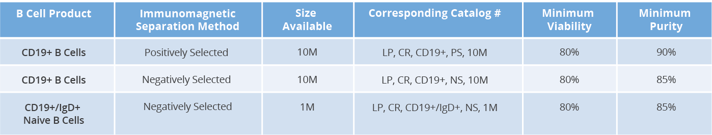 AllCells B cell portfolio chart